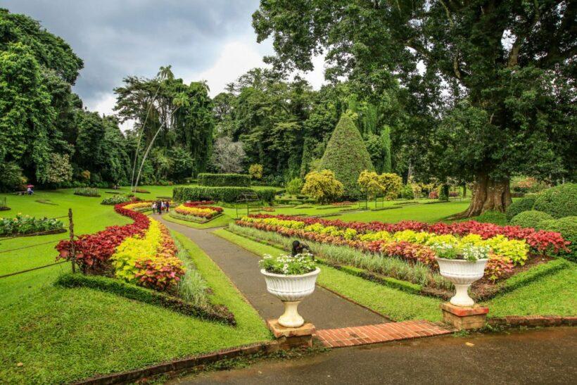 Botnical-Garden-Kandy